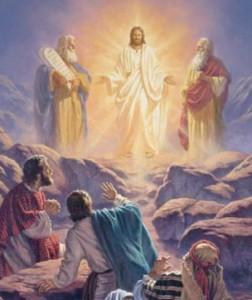 transfiguration5