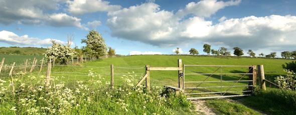 english_countryside 94 x 36